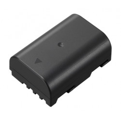 Lumix DMW-BLF19E Battery Pack