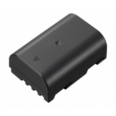 Panasonic Lumix DMW-BLF19E Battery Pack