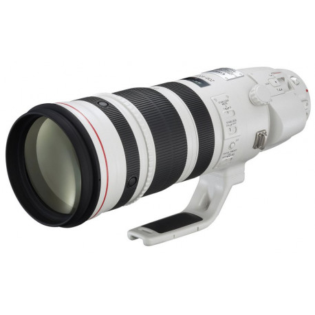 Canon 200-400mm f / 4L IS USM Extender 1.4x