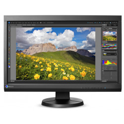 Display Eizo CS230