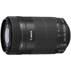 Canon EF-S 55-250mm f / 4-5.6 IS STM