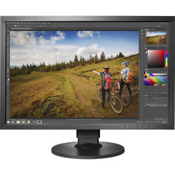 Display Eizo CS2420