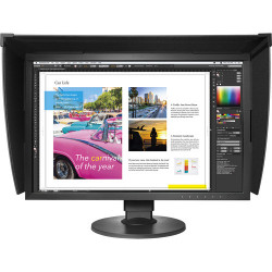 Display Eizo Eizo CG2420