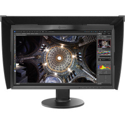 Display Eizo CG248-4K