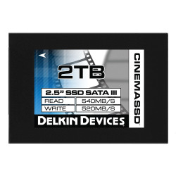 "Solid State Drive Delkin Devices SSD 2TB 2.5 ""SATA III 540R / 520W"