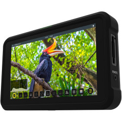 Video Device Atomos Shinobi