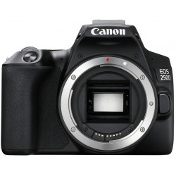 фотоапарат Canon EOS 250D + карта Lexar Professional SD 64GB XC 633X 95MB/S