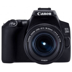 DSLR camera Canon EOS 250D + Lens Canon EF-S 18-55mm f/3.5-5.6 IS + Lens Canon EF 50mm f/1.8 STM