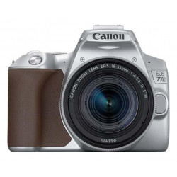 DSLR camera Canon EOS 250D (Silver) + Canon EF-S 18-55mm f / 3.5-5.6 IS Lens + Lens Canon EF-S 24mm f/2.8 STM
