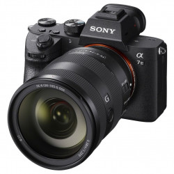 Camera Sony a7 III + Lens Sony FE 24-105mm f/4 G OSS + Lens Sony FE 55mm f/1.8 ZA