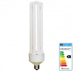 Accessory Helios Photo lamp 75W 230V E27