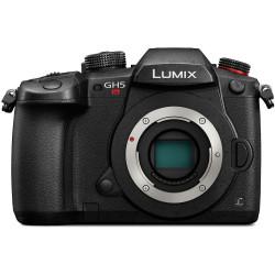 Camera Panasonic Lumix GH5s + Battery Panasonic Lumix DMW-BLF19E Battery Pack