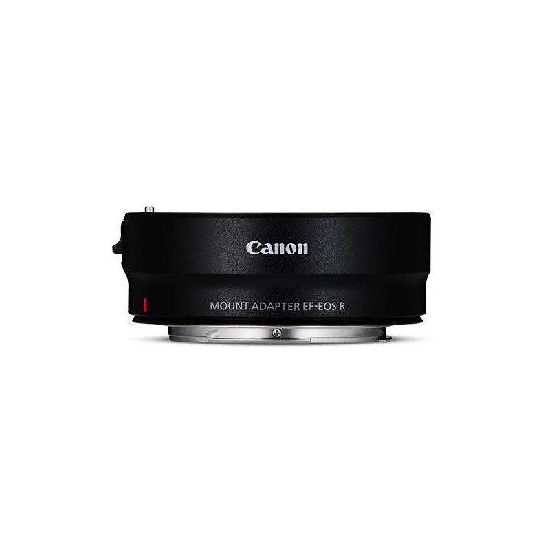 Canon EF and EF-S lens adapter with Canon EOS R cameras